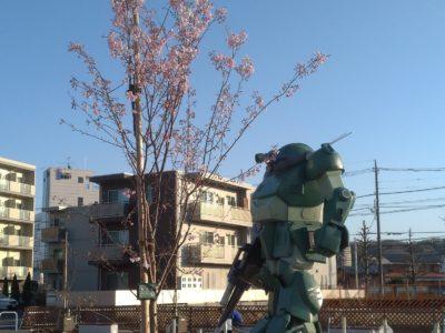 桜とボトムズ